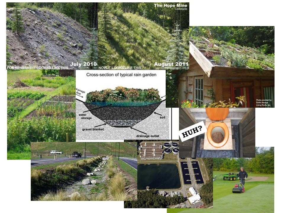 Uses finger lakes biochar for Soil and its uses