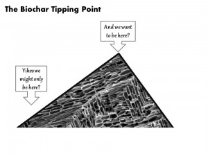 biochar tipping point
