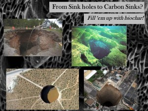 Sinkholes to Carbon Sinks