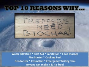 Here's why biochar just might be the most important par.t of a Survivor's Toolkit