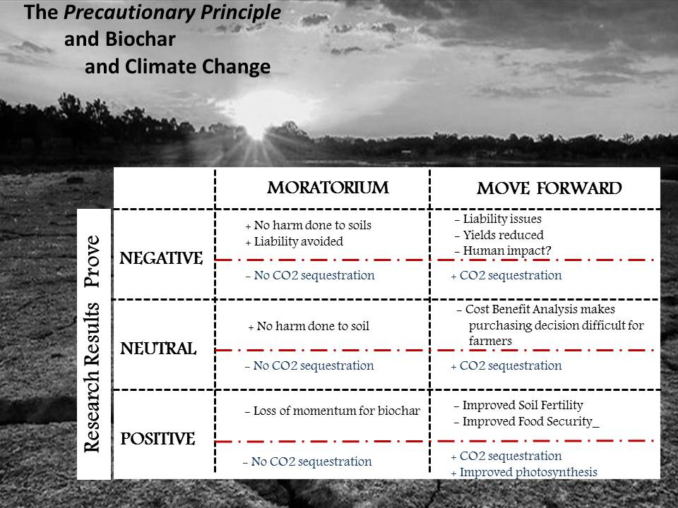 Precautionary principle2