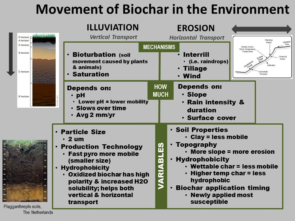biochar-movement