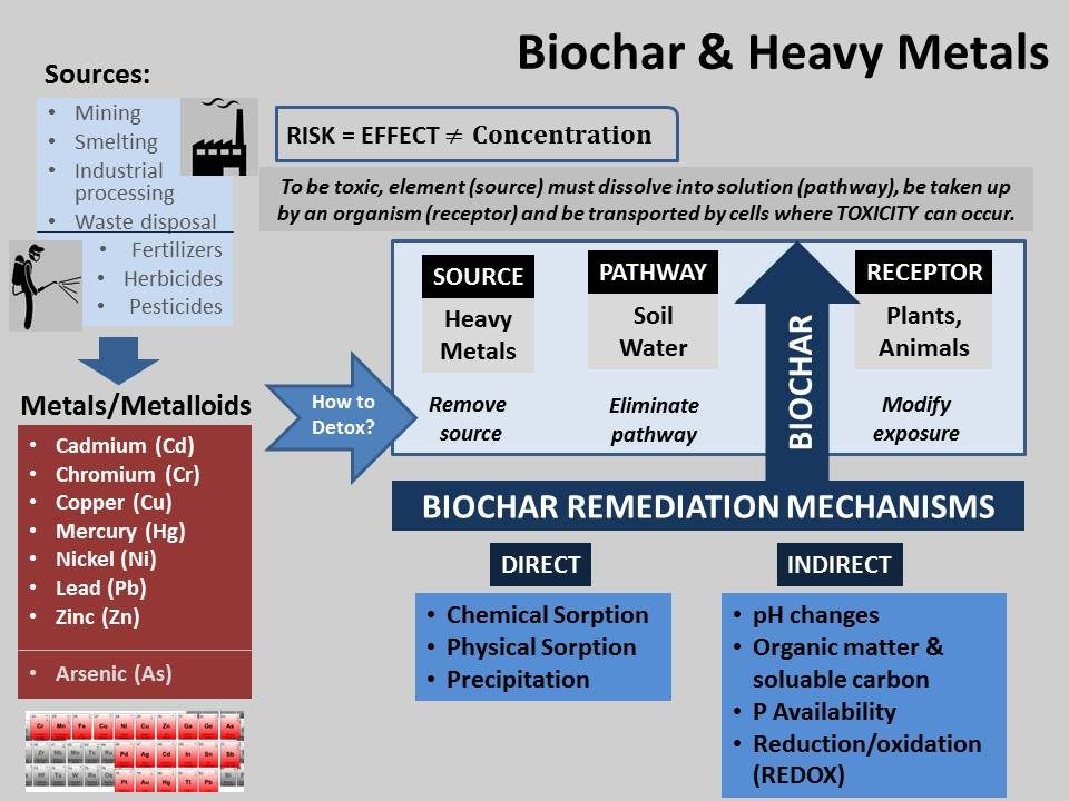 biochar-remediation-mechanisms-v2